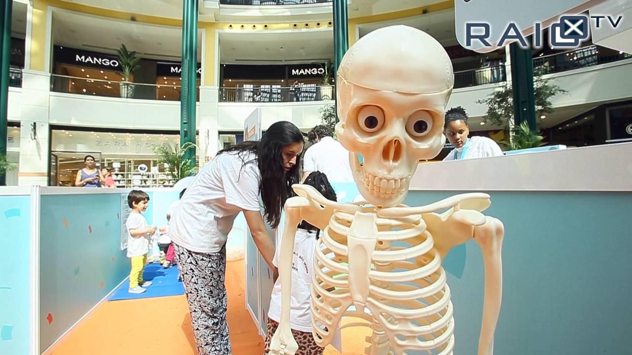 RaioX-TV | Hospital da Bonecada