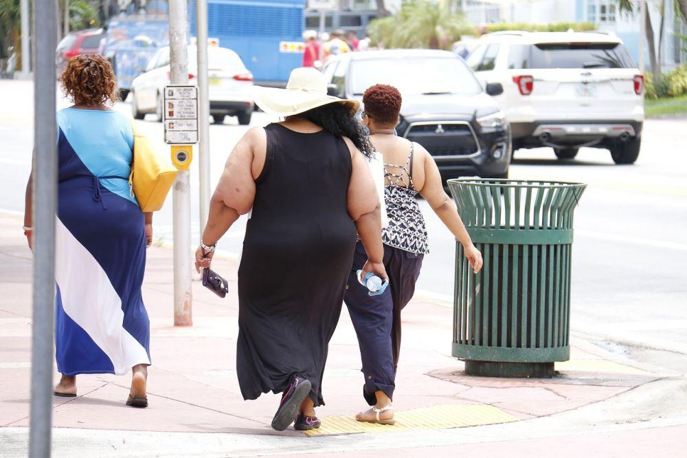 obesity-993126_1280