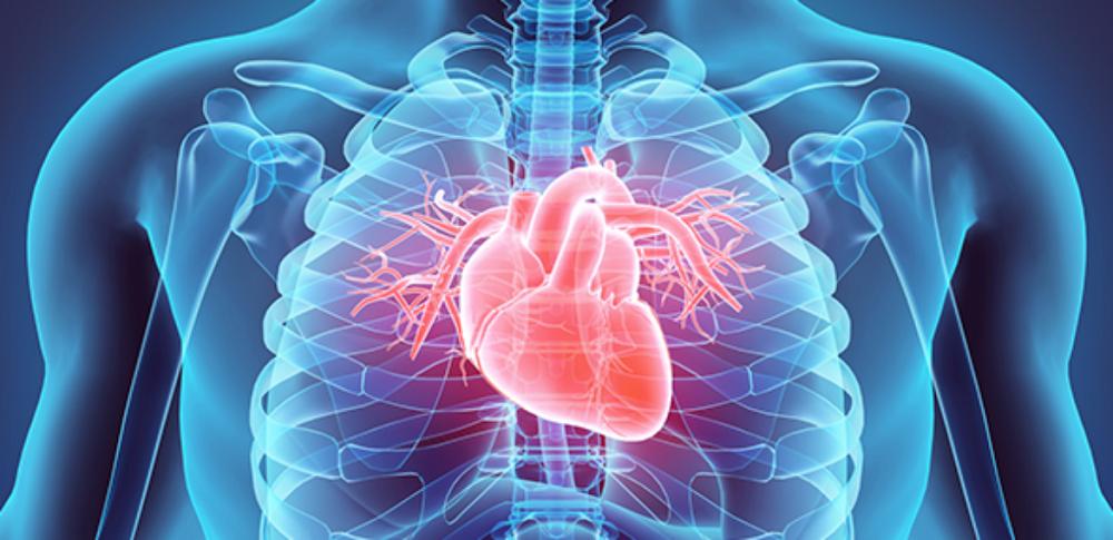 insuficiência-cardíaca-1170x568