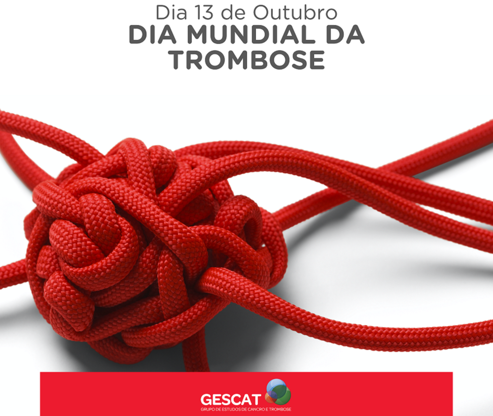 GESCAT_Imagem1